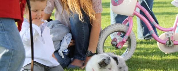 El perro y los niños